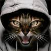 http://avatarochka.ru/_ph/23/1/31130360.jpg